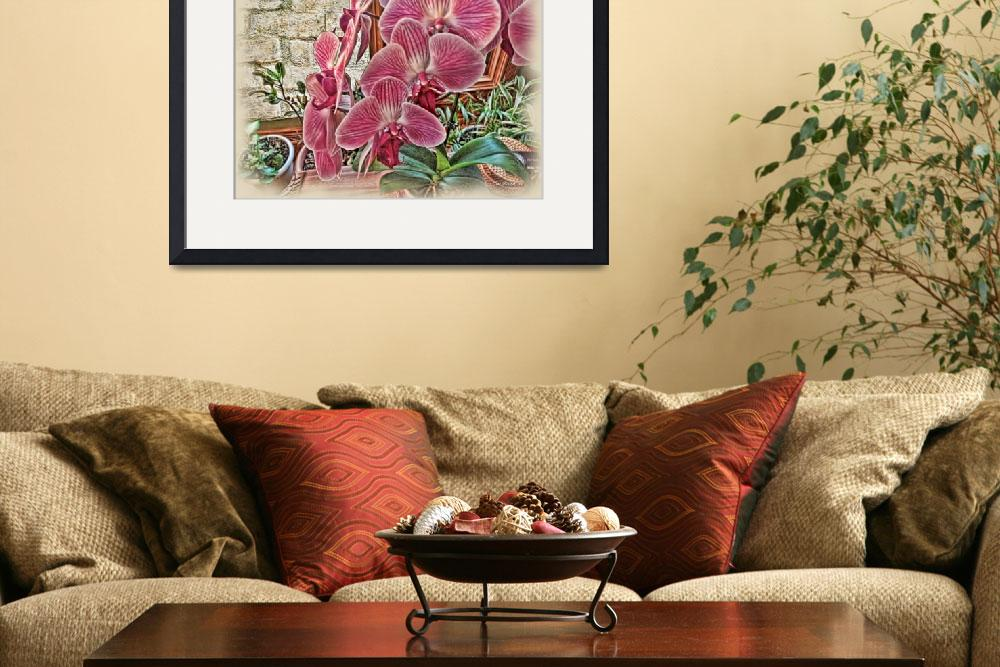 """Pink Orchids&quot  (2012) by jbjoani2"