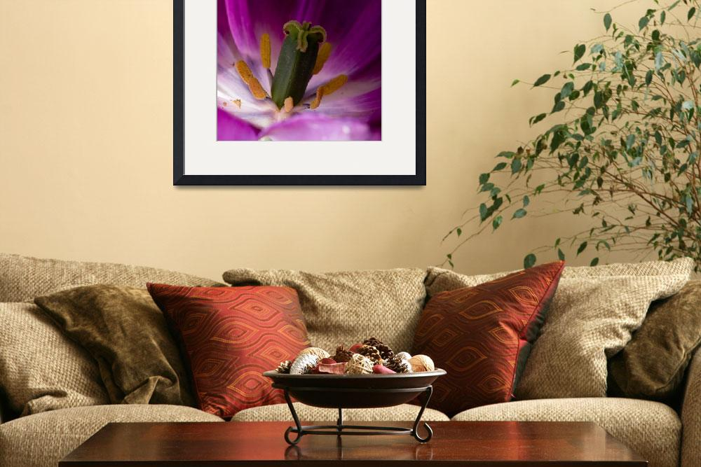 """Purple Tulip at the Core&quot  (2009) by ravenlightstudio"