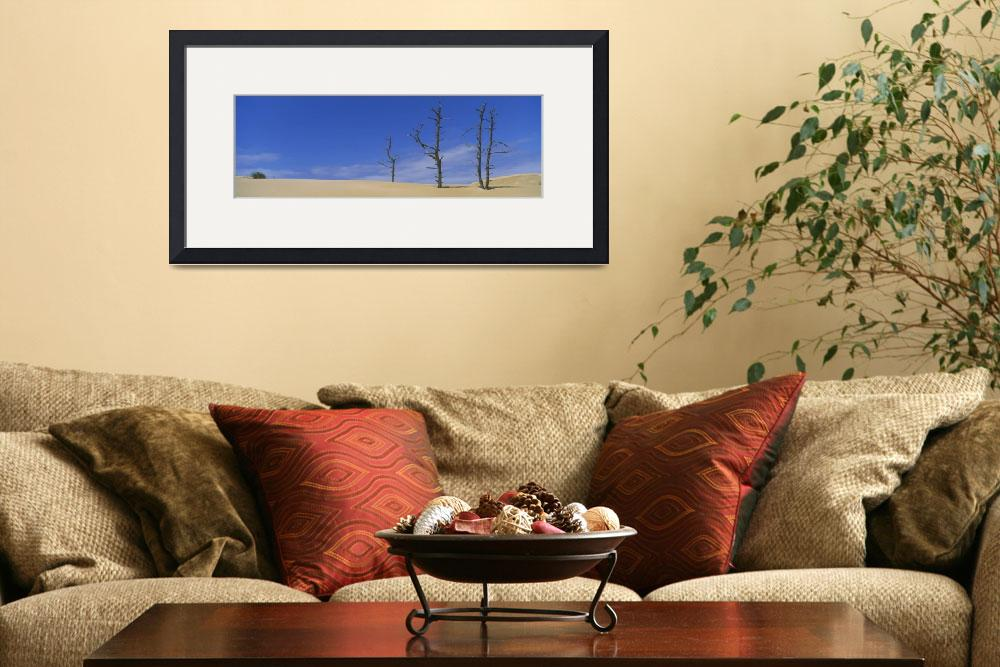 """Bare trees in the desert&quot  by Panoramic_Images"