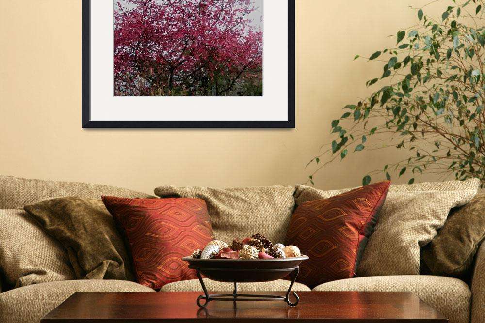 """Cherry blossom tree 1&quot  (2013) by lanjee"
