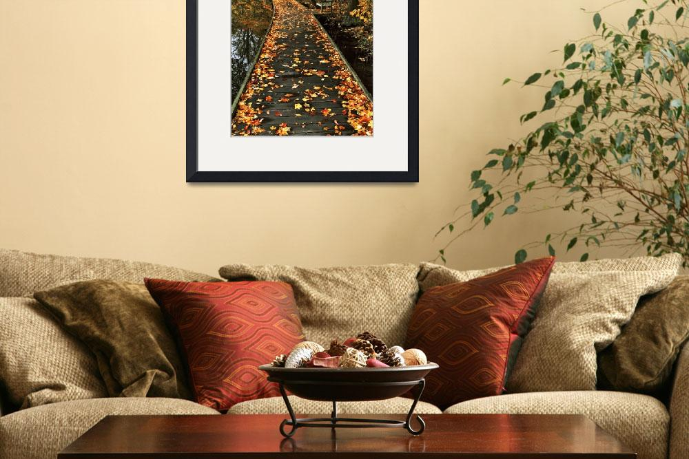 """Autumn Journey at Rowe Woods&quot  (2002) by jimcrotty"