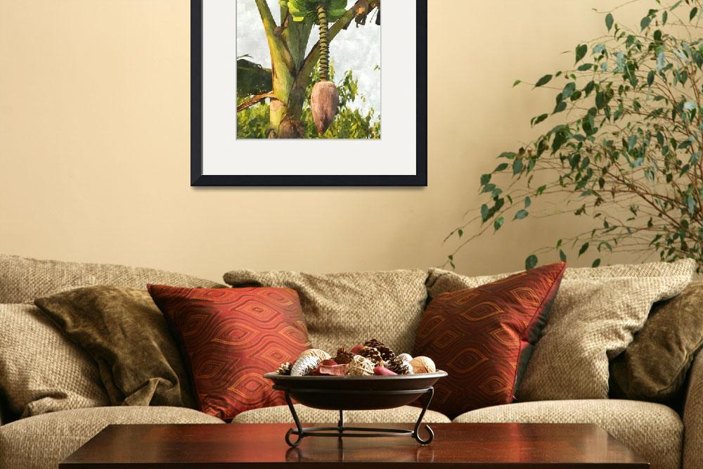 """Banana Trees With Fruits And Flower In Lush Tropic&quot  (2013) by lanjee"