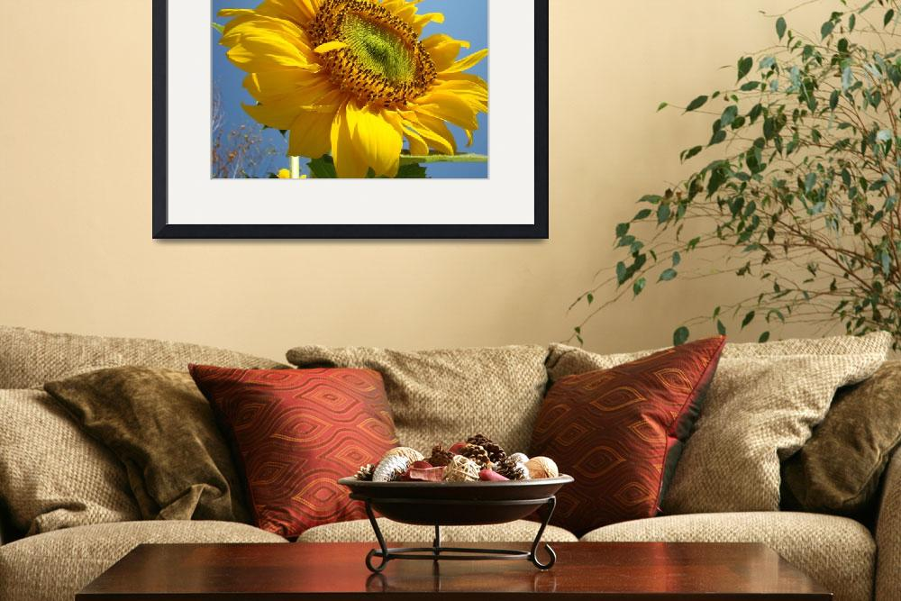 """Christmas Gift Gallery SUNFLOWERS Art&quot  (2009) by BasleeTroutman"
