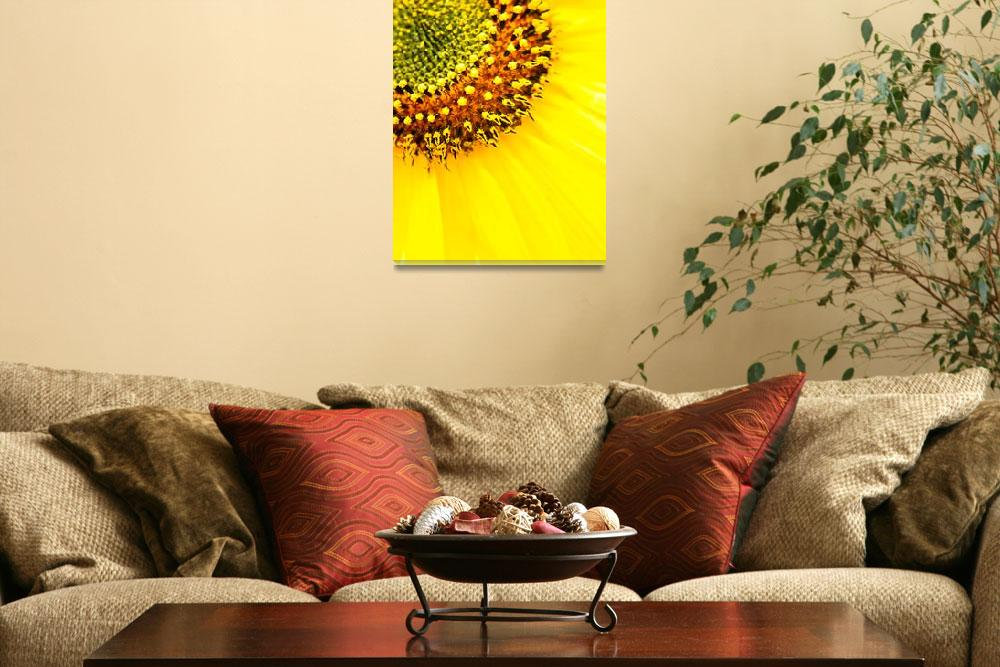 """HWNo12—Sunflower Beam&quot  (2011) by Ravenworksca"