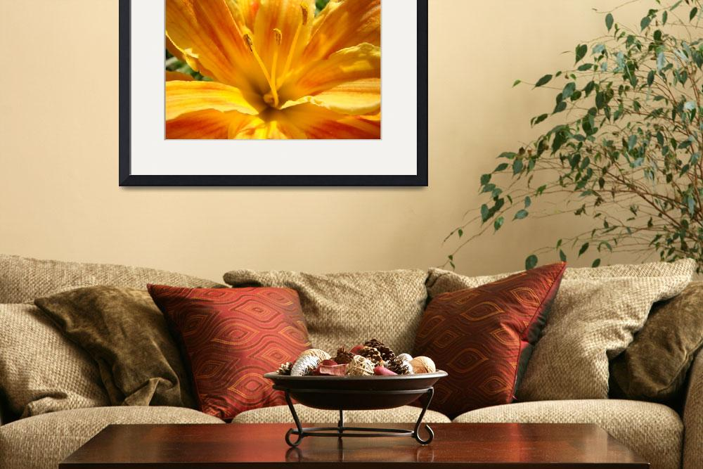 """LILIES ART Golden Orange Lily Flower Art Baslee&quot  (2009) by BasleeTroutman"