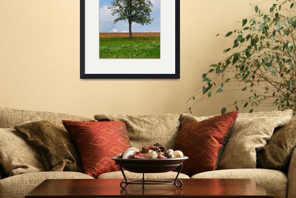"""Bright tree with green grass and blue sky&quot  (2011) by Kybdica"