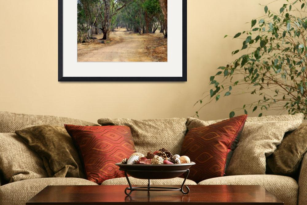 """Winding dirt road, country Australia #1&quot  by Linde"