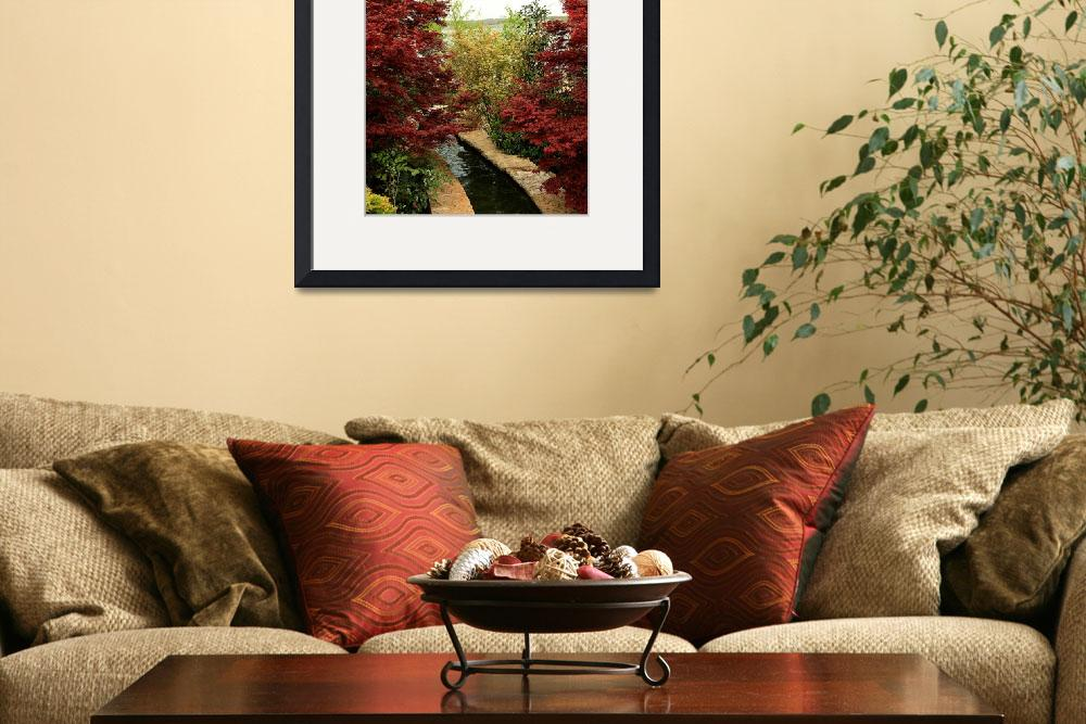 """Japanese Maples&quot  (2009) by rayjacque"