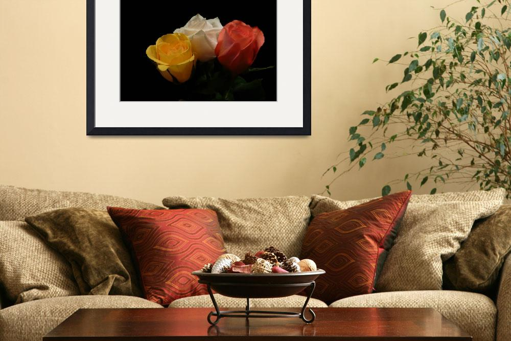 """Trio Of Roses 350&quot  (2011) by photographybydonna"