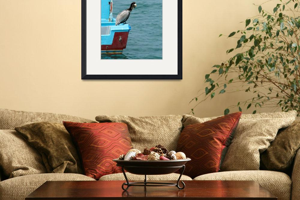 """Brown Pelican on a Boat&quot  (2014) by rhamm"