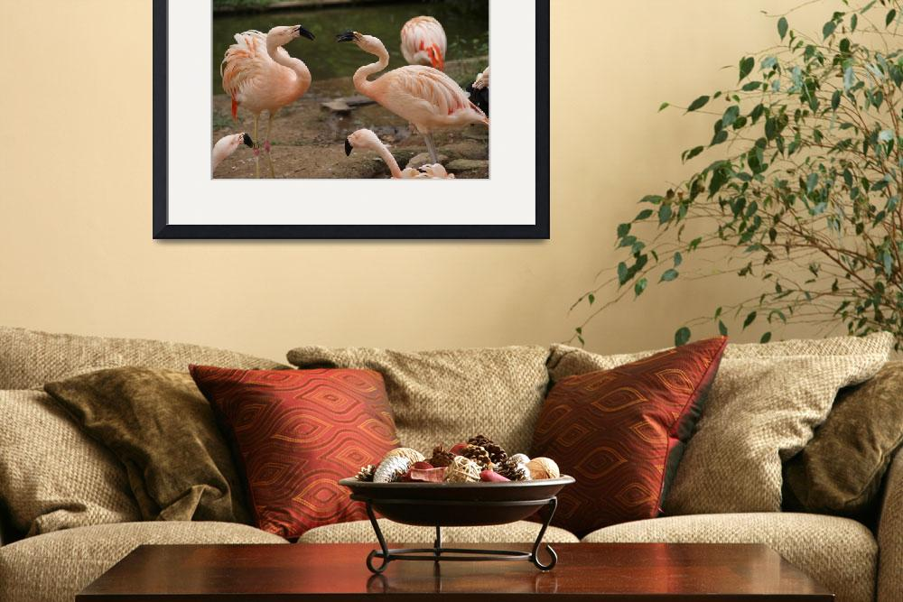 """Chatting Flamingoes&quot  by Marge"