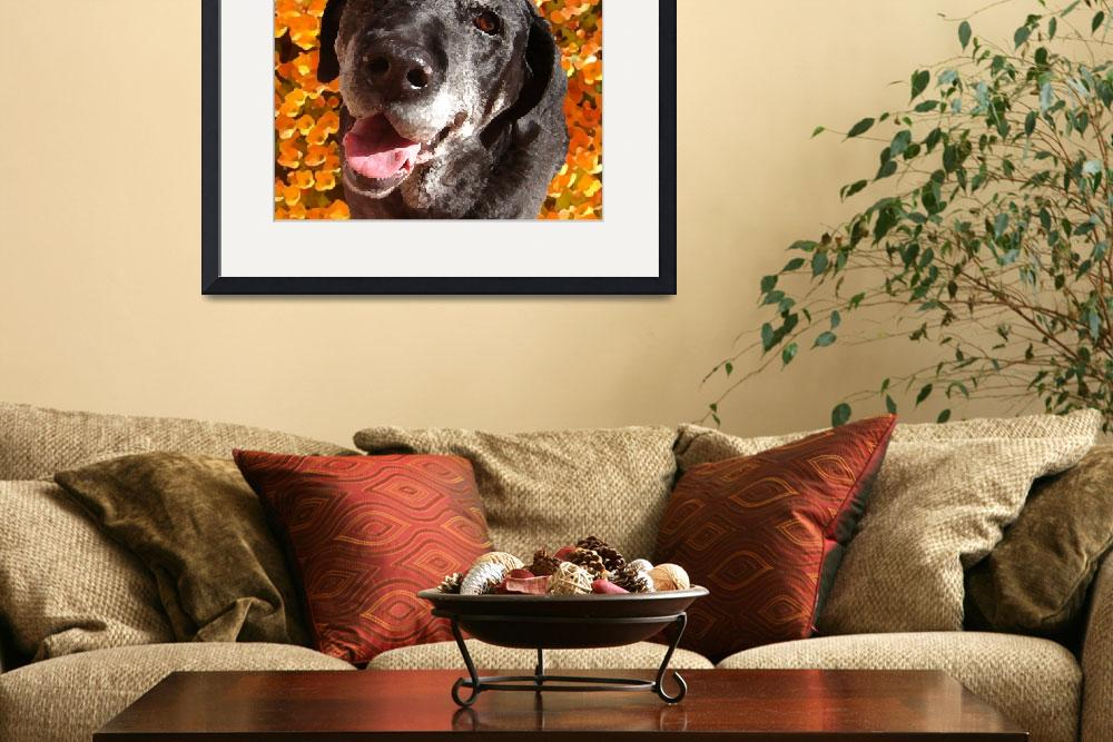 """Old Black Lab&quot  (2009) by AmyVangsgard"