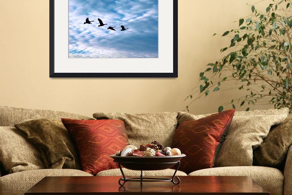 """Four Geese In Flight&quot  (2011) by netbrands"