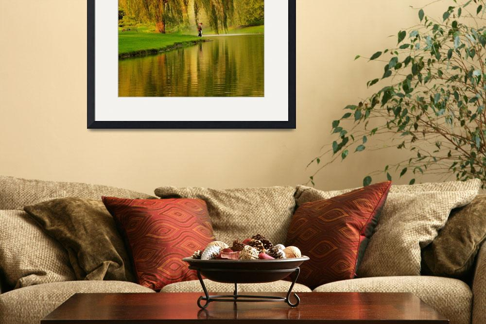 """Weeping Willow Tree Nature Landscape Scene&quot  (2008) by PhotographsByCarolFAustin"
