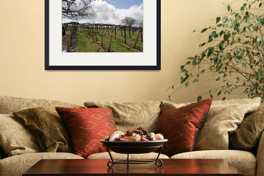 """The Vinyard II&quot  (2011) by RobinCowles"
