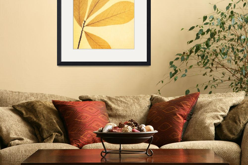 """Natural Canvas Botanicals, Yellow&quot  (2011) by GiantPeachDesigns"