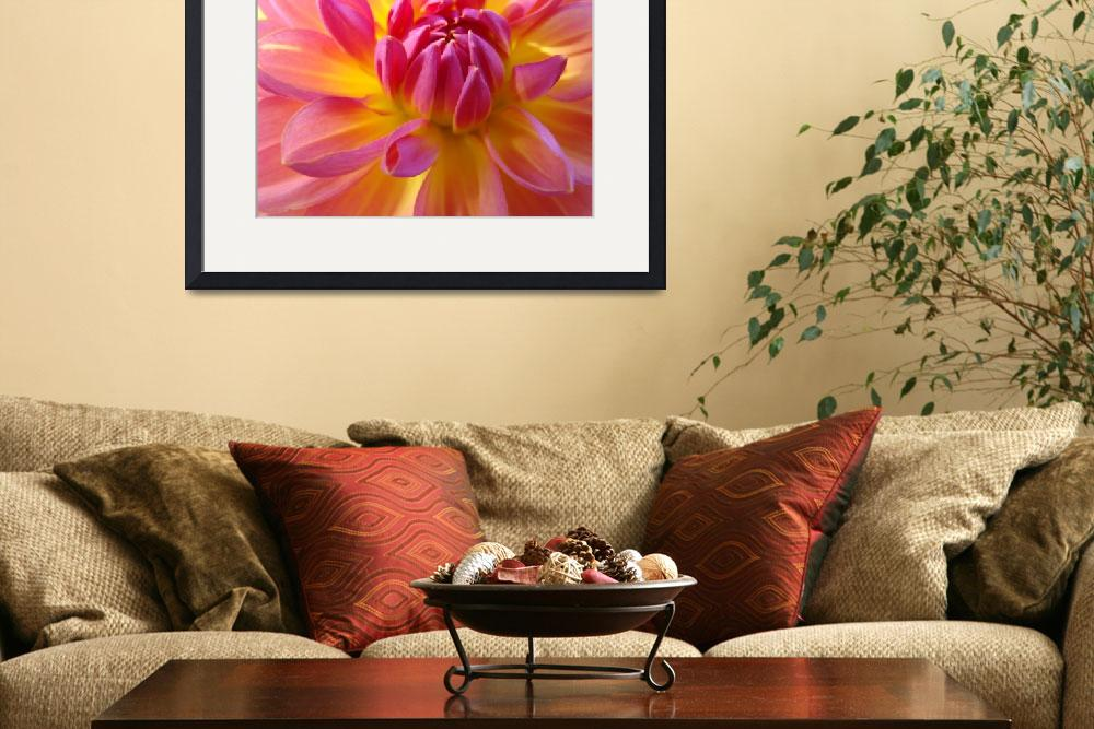 """DAHLIA FLOWER ART Prints Gifts Botanical Floral&quot  (2009) by BasleeTroutman"