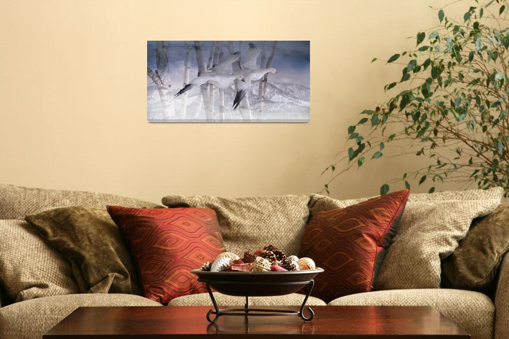 """Wintry Wafting&quot  (2009) by SteveHunziker"