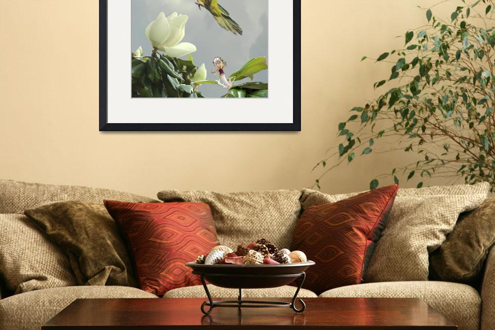 """Parrot and Magnolia Tree&quot  (2010) by spadecaller"