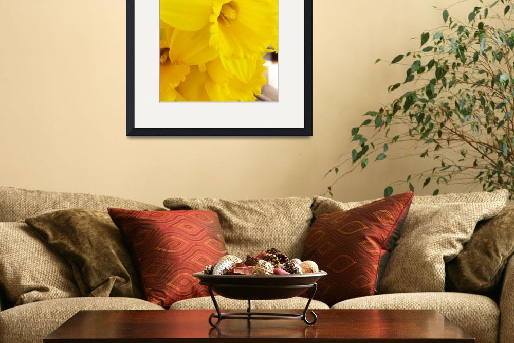 """Fanfare of Daffodils&quot  (2007) by justbyjulie"