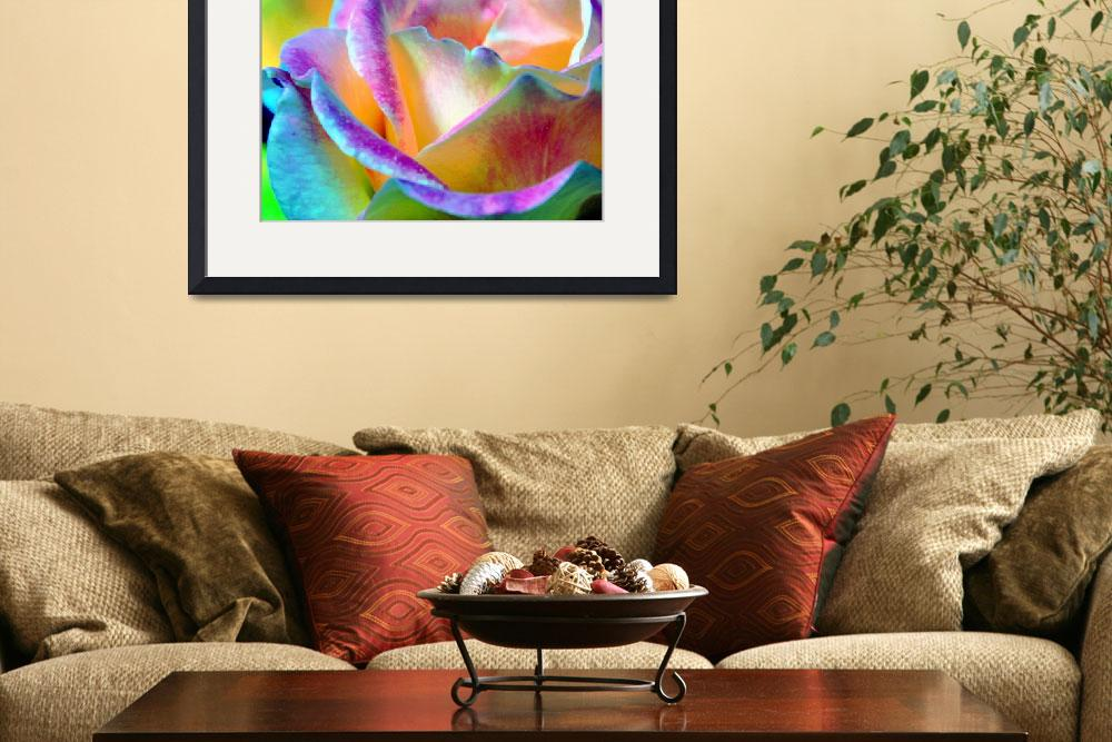 """Artful Colorful Rose&quot  (2009) by LorrieMorrison"