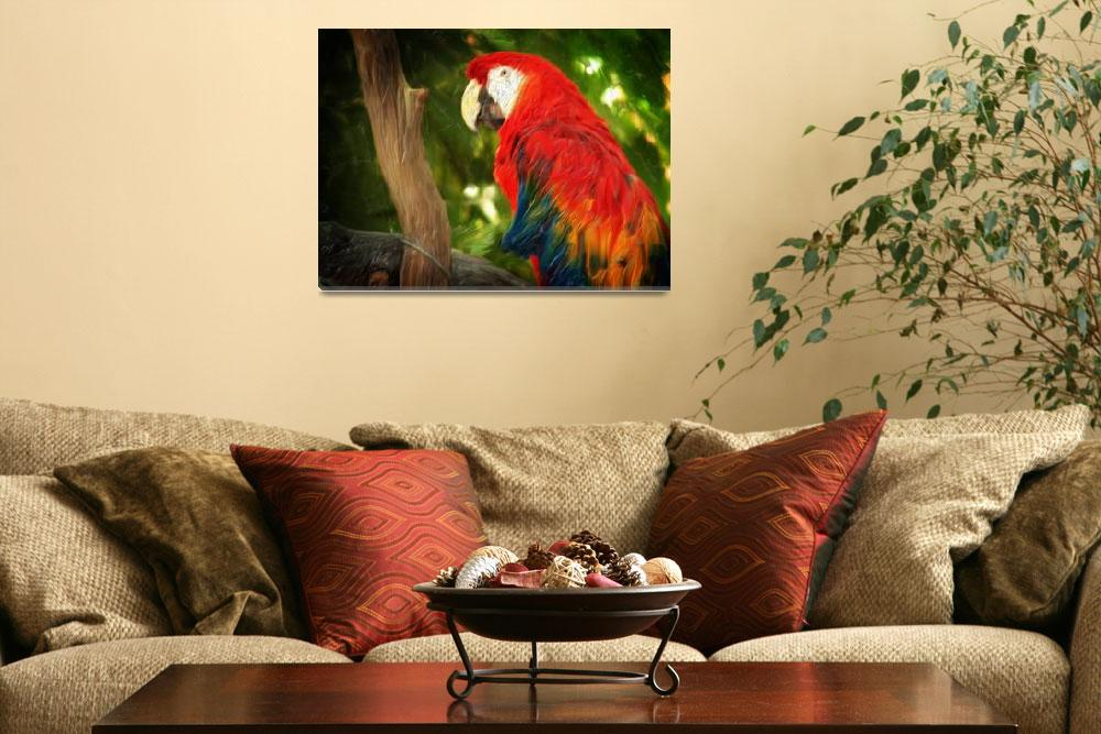 """Guacamaya Bird&quot  (2009) by jannelli"