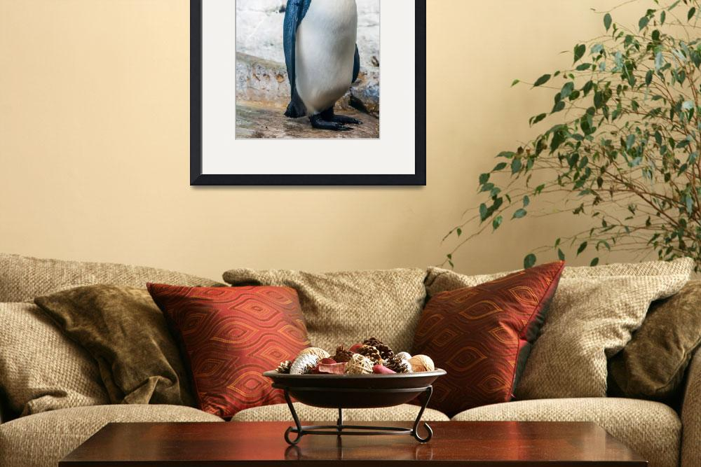 """standing on its feet penguin portrait&quot  by digidreamgrafix"