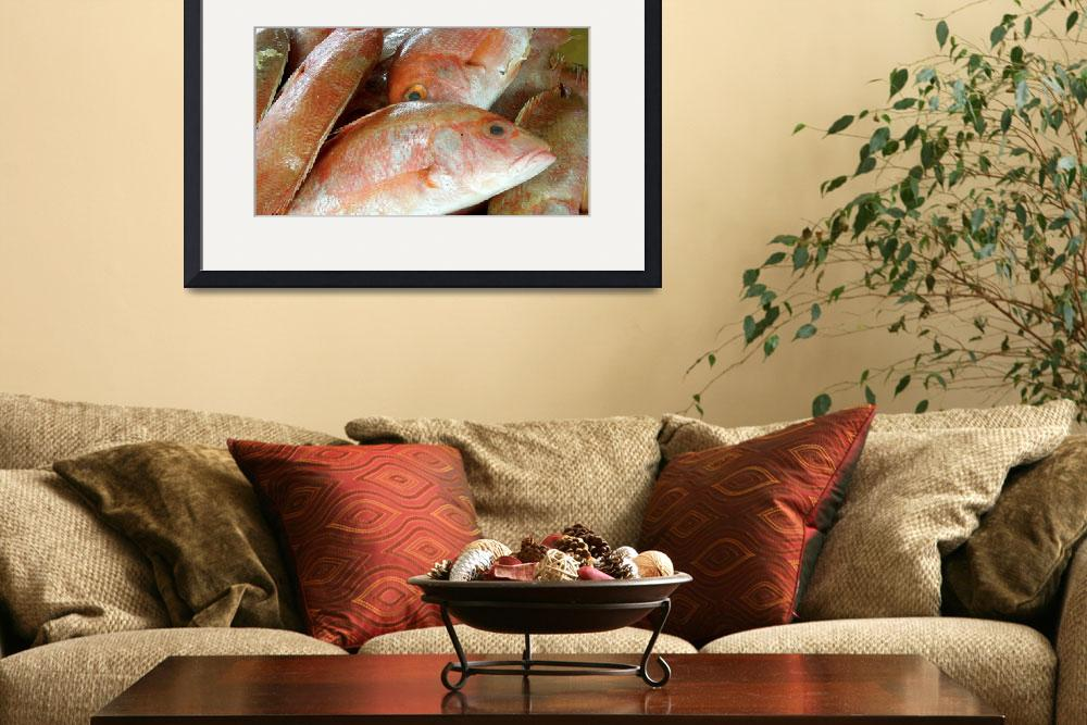 """Red Fish for Sale&quot  (2012) by MoonLiteStudio"