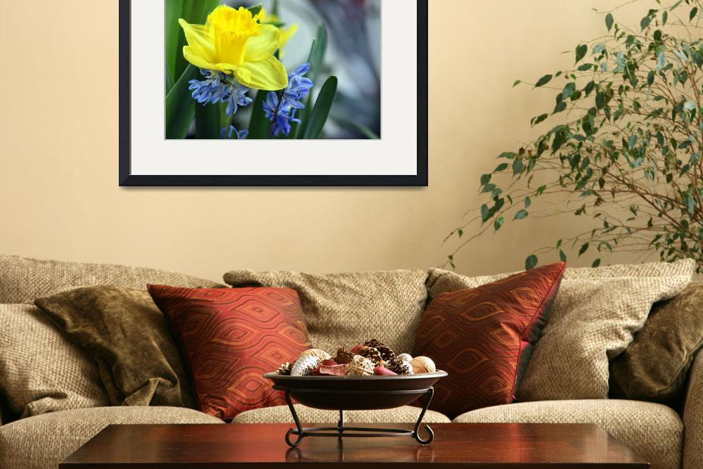 """Daffodil Blues&quot  (2014) by KsWorldArt"