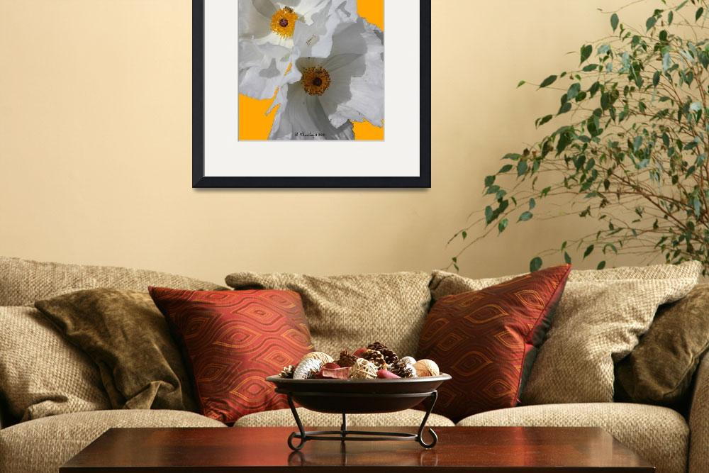 """White Poppies On Yellow&quot  (2011) by bettynorthcutt"