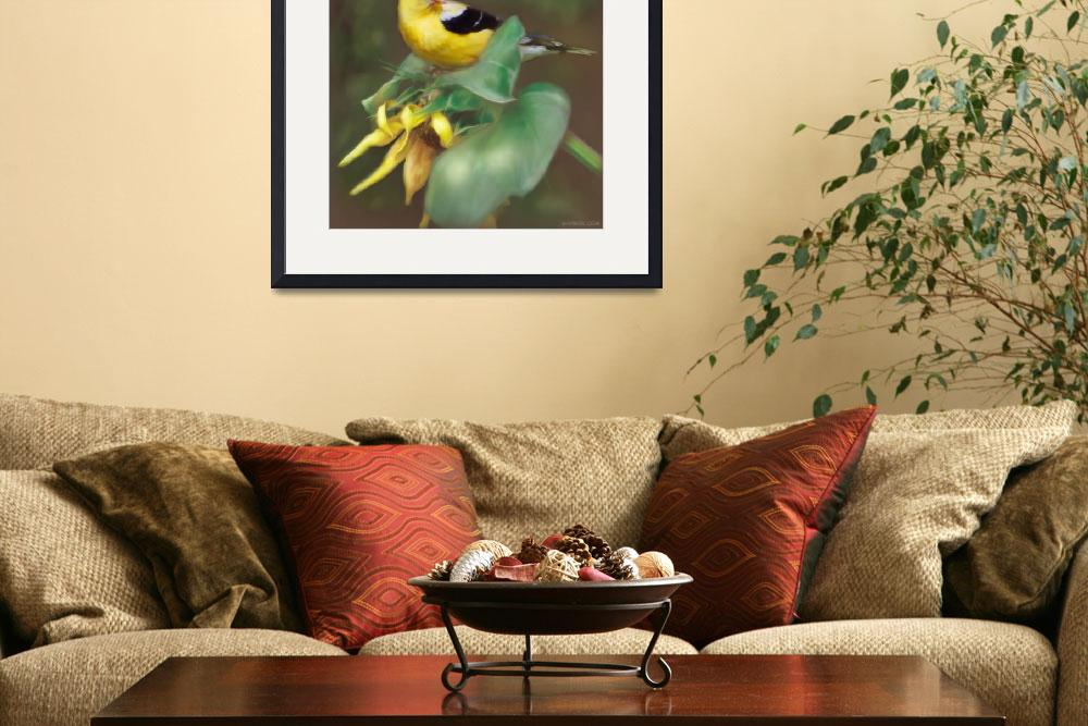 """American Goldfinch&quot  (2009) by bhymer"