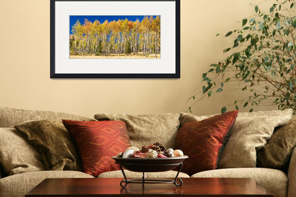 """Colorful Aspen Panorama&quot  (2013) by lightningman"