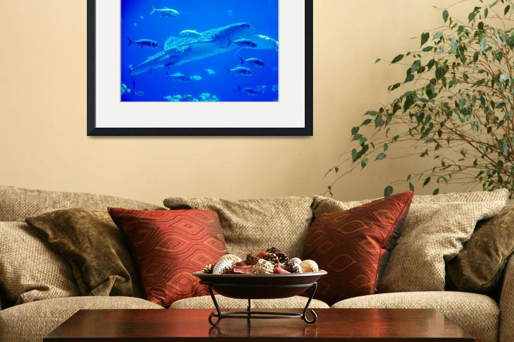 """whale sharks swimming in aquarium with people obse&quot  by digidreamgrafix"