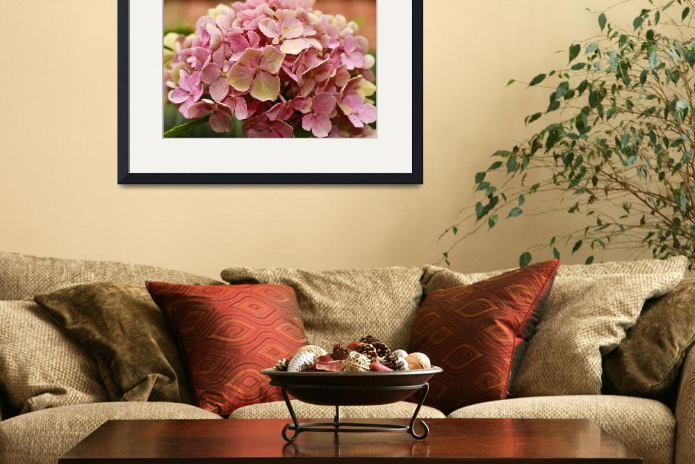 """Romantic Hydrangea&quot  (2011) by julieandel"