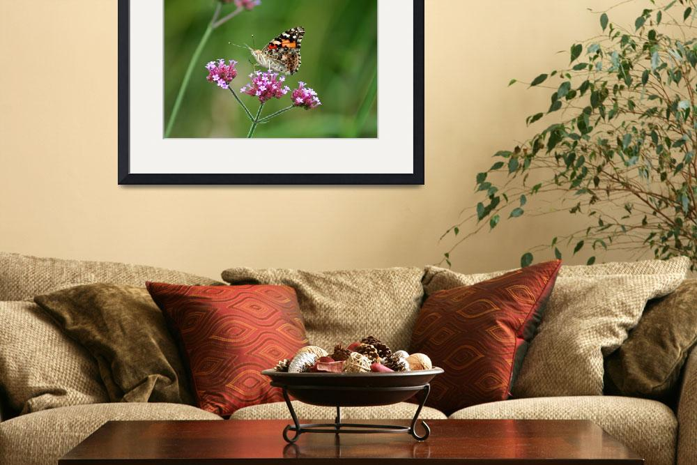 """Butterfly  American Painted Lady&quot  (2012) by KsWorldArt"