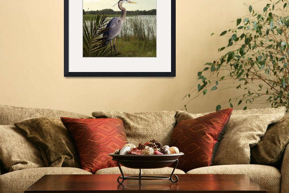 """Great Blue Heron in the Bulrushes&quot  (2010) by spadecaller"