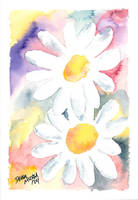 2 daisies floral painting