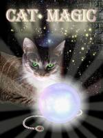 Cat Magic