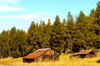 Old Barns in the Meadow