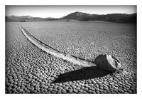 The RaceTrack Playa