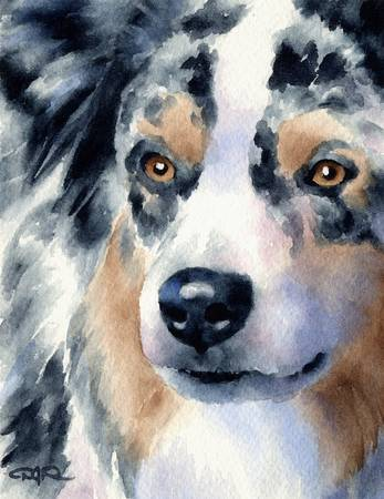 Australian Shepherd Painting Dog Art Print