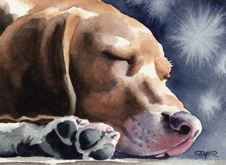 Sleeping Beagle Art Print