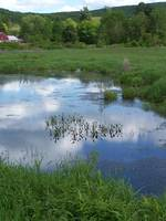Deerfield Pond Scene