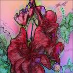Geranium by Deanne Flouton