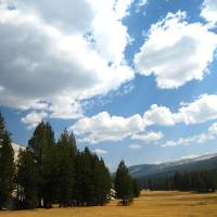 Tuolumne Meadow Clouds by Eileen Ringwald