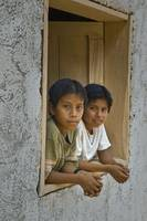 Kids in the Window