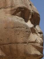 Profile of the Sphinx