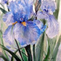"""Blue Iris I"" by MannellGallery"
