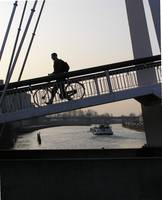 the bike bridge
