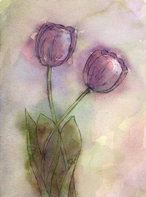 Purple Tulip Pair